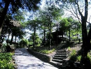 森林浴步道