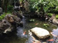 中冠礁溪大飯店-庭園水池