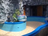 天隆大飯店-湯池