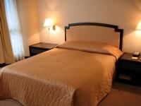 金世紀大飯店-標準客房