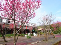 Sanyi Blossom Art Village Holiday Club-