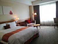 桃禧航空城酒店-雅緻客房一大床房
