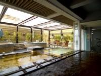 東森山林渡假酒店-泡湯池