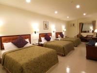 Puti Commericial Hotel-