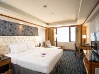 鼎隆國際商旅-豪華一大床套房