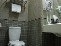 音樂世界旅邸-乾濕分離浴室