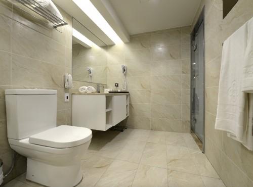 品玥套房衛浴