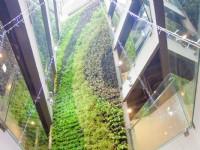 台中逢甲葉綠宿旅館-植生牆
