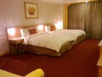 星美休閒飯店-豪華景觀雙人房