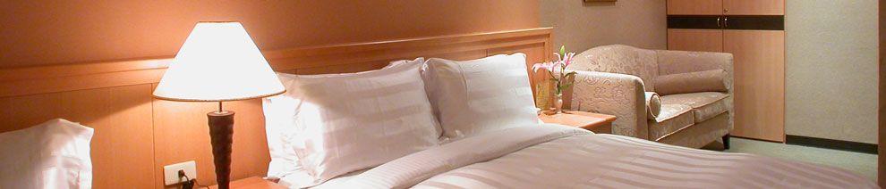 Dahshin Hotel Dahshin Hotel