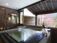 碧逸會館-客房浴池