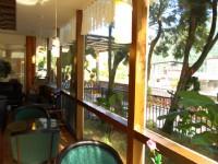 泉世界溫泉會館-露天庭園咖啡廳