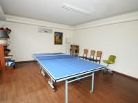 泉世界溫泉會館-乒乓球室