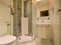 萊恩精品旅館-商務房衛浴