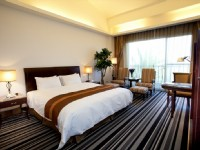 台南商務會館-雅緻單床房