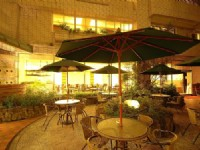 麗格休閒飯店-中庭咖啡吧夜景