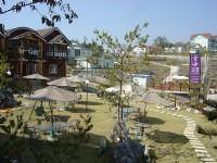 雲海景觀渡假山莊-庭園