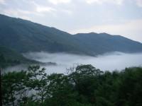 金台灣山莊-山莊可眺望雲海景觀
