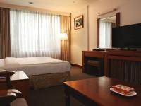 杉林溪森林生態渡假園區-大飯店兩人房-單床