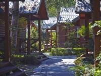 牛耳艺术渡假村-