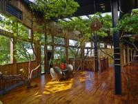 牛耳藝術渡假村-雕之森樹屋餐廳