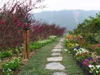 名兰枫香花园-