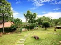 禾題渡假民宿-民宿庭園