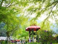 楓樺台一渡假村(台一生態休閒農場)-花神廟
