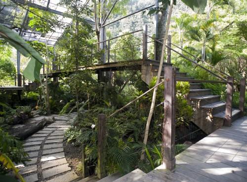 雨林風情館
