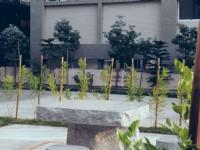 集集晴海旅館-庭院