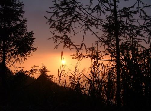 奮起湖夕陽