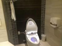 仁義湖岸大酒店-湖岸尊爵四人房浴室