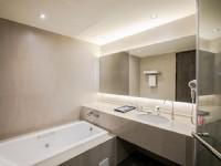 金獅湖大酒店-精緻雙人房衛浴