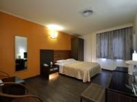 統茂高山青飯店-精緻單床雙人房