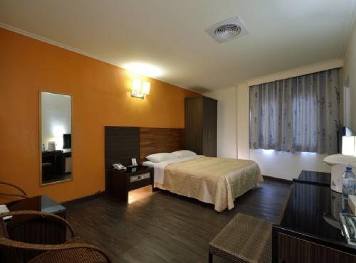 精緻單床雙人房
