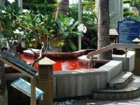 Swan Lake Villa Resort-Herbal Pool